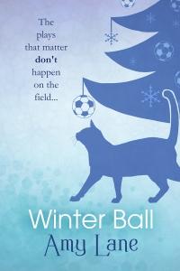 WinterBallFS